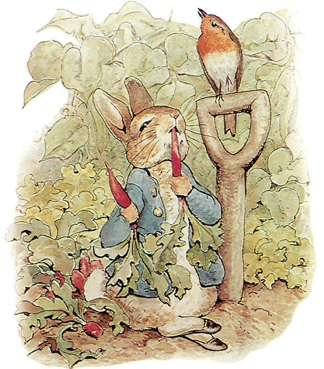 Peter Rabbit in Farmer MacGregor's Carrots