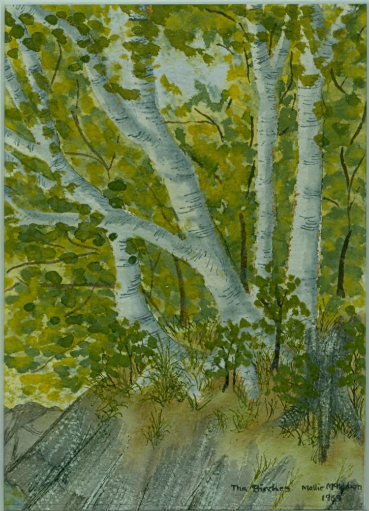 Birches- watercolour