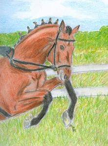 Horse Preparing to Jump