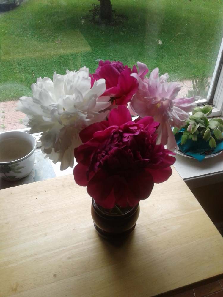 Peonies from the garden #2